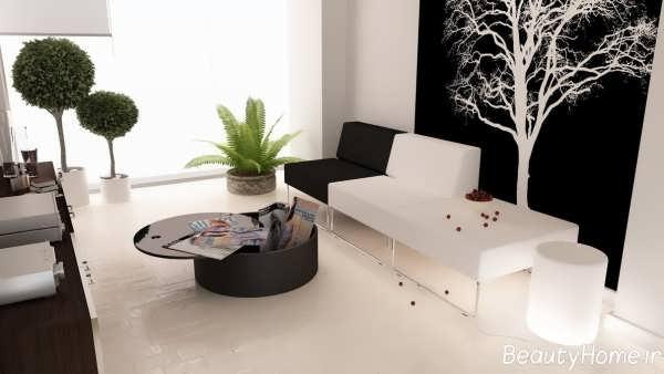 دکوراسیون سفید و مشکی برای خانه های زیبا